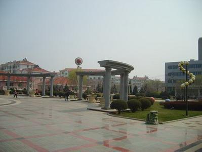 医院地址:葫芦岛市连山区